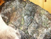 Custom Rock